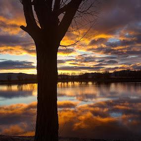 Morning sunrise by D.j. Nichols - Instagram & Mobile Android ( morning sunrise )