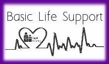 Basic Life Support + CPR & AED training | Regal Training