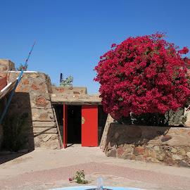 Taliesin Cabaret Entrance by Eric Hansen - Buildings & Architecture Homes ( scottsdale, taliesin west, arizona, frank lloyd wright )