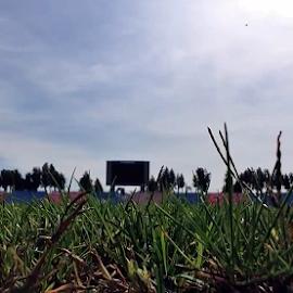 Ghencea Stadium by Alexandru VA - Sports & Fitness Soccer/Association football ( ghencea stadium )