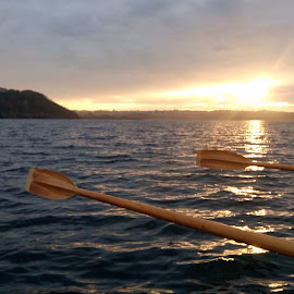 Oarsome gig rowing sunsets by Caroline Dadley - Sports & Fitness Watersports ( sunset, sea, oars )