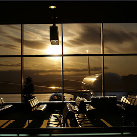 Narita Lull by Todd Leslie - Transportation Airplanes ( airlines, narita, travel )