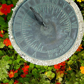 Sundial by Amanda Pietrangelo - Buildings & Architecture Statues & Monuments ( bird, pansy, dial, flowers, garden )