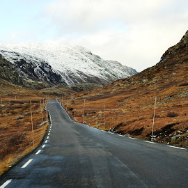 Roadtrip Norway by Hiking Viking - Landscapes Mountains & Hills