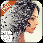 Download Photo Lab PRO Photo Editor APK to PC
