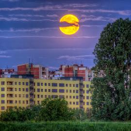 by Boris Frković - City,  Street & Park  Skylines