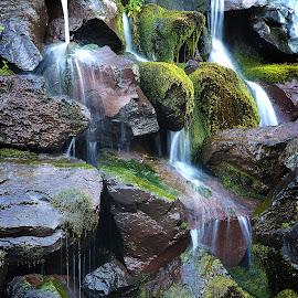 by Todd Klingler - Nature Up Close Water