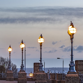 lighting poles by Selaru Ovidiu - Artistic Objects Antiques ( alexandra palace )
