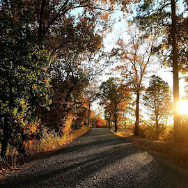 Sunset Fall drive by Jeremy Irwin - Instagram & Mobile Android ( sunset, outdoors, road, woods, shadows )