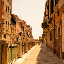 Venice by Andrew Moore - City,  Street & Park  Vistas