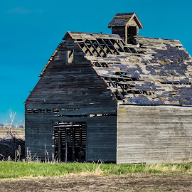 The Grainery by Gary Wahle - Buildings & Architecture Decaying & Abandoned ( farm, iowa, grainary, grainery, abandoned,  )