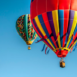 by Kimberly Sheppard - Transportation Other ( flight, sky, colorful, balloons, hot air balloons )