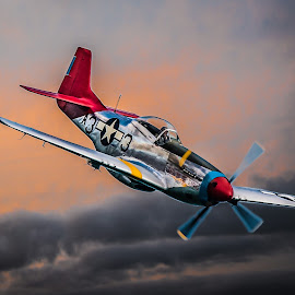 Mustang P51 Red Tail by Anthony P Morris - Transportation Airplanes ( p51, mustang, americanfighter, anthony morris, american, aircraft, oxford, anthonypmorris, redtail, farmoor, mustangp51, fighter )