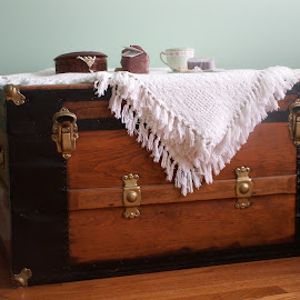 Treasure Chest by Marcelle Charrois - Artistic Objects Furniture ( wooden, treasure chest, wood, treasure, chest )