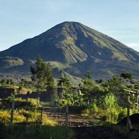 - by Riza Sandjaya - Landscapes Mountains & Hills