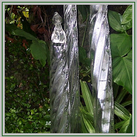 Silver ice-cycles  by Sandy Stevens Krassinger - Artistic Objects Glass ( ice-cycles, silver, plants, glass, artistic object )