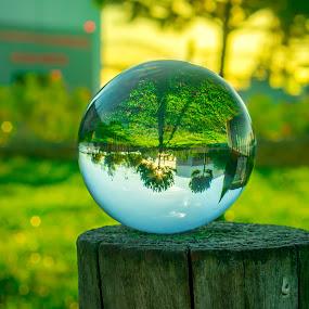 Amanhecer lá dentro by Adriano Freire - Artistic Objects Glass ( dentro, jardim, amanhcer, bola, vidro )