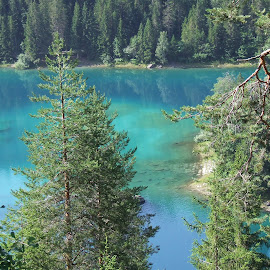 by Serguei Ouklonski - Landscapes Waterscapes ( water, forest, lake )