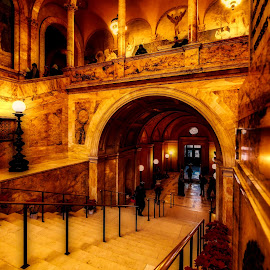 STAIRS TO WISDOM by Michael Rey - Buildings & Architecture Public & Historical ( boston, library, historic, interior architecture, massachusetts, stairs )