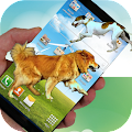 Cute dog live wallpaper APK for Kindle Fire