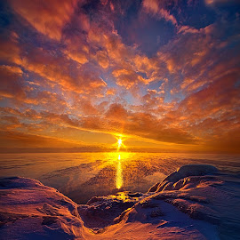Standing Stilled by Phil Koch - Landscapes Sunsets & Sunrises ( vertical, arts, fine art, travel, yellow, love, sky, nature, snow, weather, light, trending, colors, twilight, art, mood, horizon, journey, rural, portrait, country, winter, dawn, environment, season, serene, popular, outdoors, lines, natural, inspirational, hope, canon, wisconsin, ray, joy, landscape, sun, photography, wall art, life, emotions, dramatic, horizons, inspired, clouds, office, heaven, camera, beautiful, scenic, living, morning, field, color, unity, blue, sunset, peace, meadow, beam, sunrise, earth )