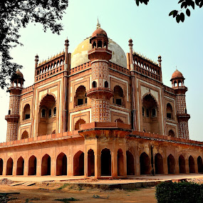 Silent Tomb by Neha Neekhra - Buildings & Architecture Statues & Monuments ( tomb, marble, sky, arches, minarets, delhi )