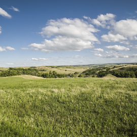 Farmmer's Field by Julie Wooden - Landscapes Prairies, Meadows & Fields ( farm, partly cloudy, north dakota, hebron, green, outdoors, landscape, spring,  )