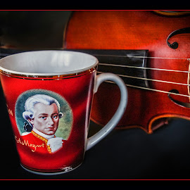 Mozart by Darko Kordic - Artistic Objects Still Life