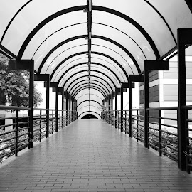 A Pedestrian Bridge by Koh Chip Whye - Black & White Buildings & Architecture