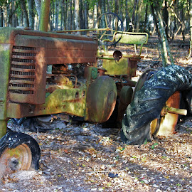John Oh Dear by David Walters - Artistic Objects Antiques ( farm, old, lumix fz200, rusted, antique, tractor, bob & louise's farm )