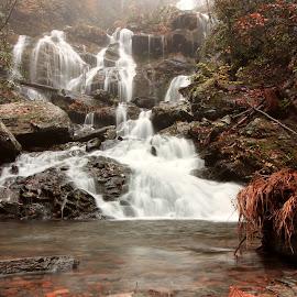 Cascades of Carolinas - V by Avishek Bhattacharya - Nature Up Close Water