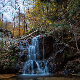 Fall falls by Deborah Felmey - Landscapes Forests ( forest, waterfalls, fall, leaves, color, waterfall, maryland, state parks )