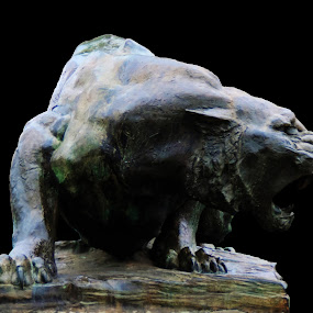 by Aritra Sur - Artistic Objects Antiques ( solid, lion, stone art, metal lion )