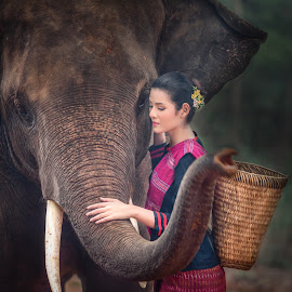 Compassion by Arunan S Athi - Animals Other ( colour, model, girl, village, female, bag, dress, elephant, tradition, male, forest, compassion )