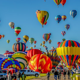 Early morning launch by Ruth Sano - Transportation Other ( balloon fiesta, albuquerque, launch, hot air balloons, new mexico )