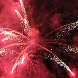 Exploding Pink! by Lena Arkell - Abstract Fire & Fireworks ( canada, canada day, fireworks, pink, july 1 )