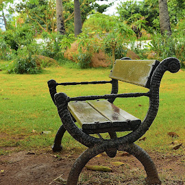Waiting For You by Malay Maity - City,  Street & Park  City Parks ( park, bench, alone, garden, city )