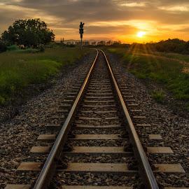 Train Tracks........... by Cindy Bester - Transportation Railway Tracks ( train tracks, sky, grass, pebbles, sun )