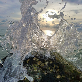 Gulf waves at sunset by Jeffrey Lee - Nature Up Close Water