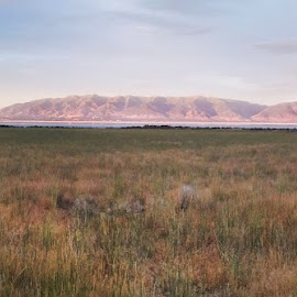 Antelope Island Panorama - 2016 by Dave Skorupski - Landscapes Prairies, Meadows & Fields ( mountain, america, arid, landscape, panorama, wide view, island, mountains, distance, sky, vast, antelope island, lonely, grassland, wild, peaceful, desert, dry, grass, desolate, flat, wide, quiet, united states, wilderness, antelope, western, view, brush, west, panoramic )