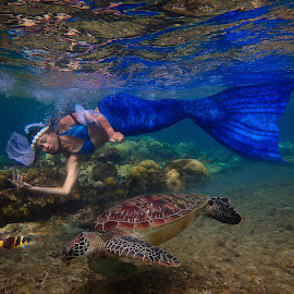 Mermaid with a Turtle by Sergei Tokmakov - People Portraits of Women ( model, sexy, girl, female, blue, tokmakov, freediving, mermaid, portrait )