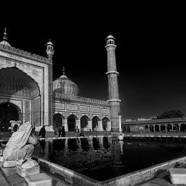 The gorgeous Jama Masjid  by Kallol Bhattacharjee - Black & White Buildings & Architecture ( islam, black and white, mosque, architecture, nikon, tokina )