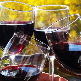 Wine among friends by Kari Schoen - Food & Drink Alcohol & Drinks ( wine, red wine, alcohol, celebrating, wine glasses, drinks )