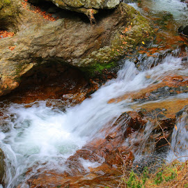 by РАЙНА СИНДЖИРЛИЕВА - Nature Up Close Water
