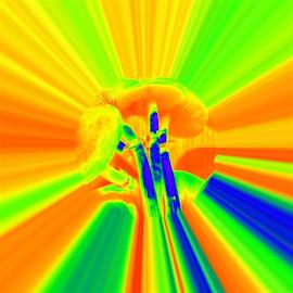 Rainbow by Virginia Howerton - Digital Art Abstract