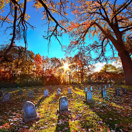 Grave Matters by Phil Koch - City,  Street & Park  Cemeteries ( vertical, arts, fine art, travel, yellow, love, sky, nature, autumn, weather, light, trending, colors, twilight, art, mood, horizon, journey, forest, rural, portrait, country, dawn, environment, season, serene, popular, outdoors, lines, natural, inspirational, hope, canon, wisconsin, ray, joy, landscape, sun, photography, life, emotions, dramatic, horizons, inspired, clouds, office, heaven, camera, beautiful, scenic, living, morning, woods, field, color, unity, blue, sunset, fall, peace, meadow, beam, sunrise, earth )