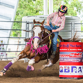 Low Rider by Sarah Sullivan - Sports & Fitness Other Sports ( #dalby, #sarahsullivanphotography, #barrelracing, #qbra )