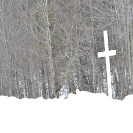cross on snow by Jaliya Rasaputra - Landscapes Weather