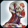 App Нормальная анатомия человека APK for Kindle