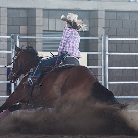Hit the skids by Sarah Sullivan - Sports & Fitness Other Sports ( barrel racing, dust, dalby, sarah sullivan photography )
